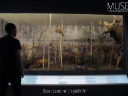 Eesti-ettevõte-Museko-hakkab-arendama-Rootsi-suurimat-tehnoloogiamuuseumi.png