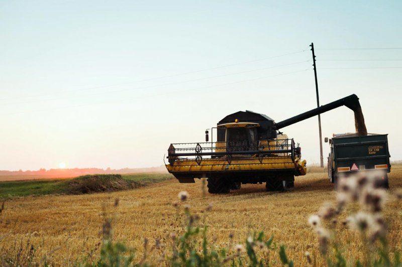 Maaeluministeeriumis valmis 2018. aasta põllumajanduse, kalanduse ja toiduainetööstuse ülevaade