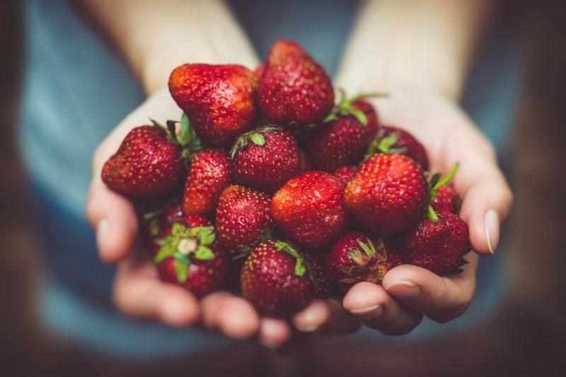 PALUN HOIAME EESTI ASJA I Mürgiste maasikate skandaal! Veterinaar- ja Toiduameti poolt läbi viidud menetlus rikkumisi ei tuvastanud